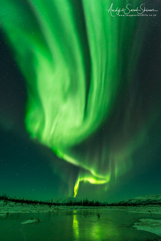 Spaceweather time machine what we saw however was way beyond what i expected a crazy vibrant aurora boomed into action turning everything around us green publicscrutiny Images