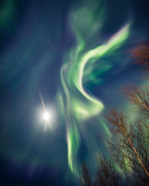 News Burst 8 Febbraio 2020 - Aurora in Rovaniemi Finlandia, 6 Febbraio 2020